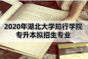 2020年湖北大学知行学院普通专升本拟招生专业公告