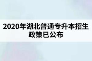 2020年湖北普通专升本招生政策已公布