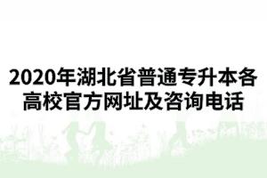 2020年湖北省普通专升本各高校官方网址及咨询电话