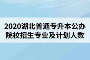 2020年湖北普通专升本公办院校招生专业及计划人数