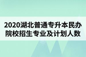 2020年湖北普通专升本民办院校招生专业及计划人数