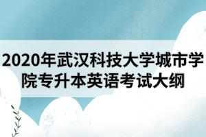 2020年武汉科技大学城市学院专升本《英语》专业考试大纲