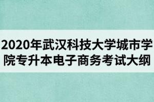 2020年武汉科技大学城市学院普通专升本《电子商务》专业考试大纲