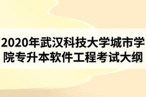 2020年武汉科技大学城市学院专升本《软件工程》专业考试大纲