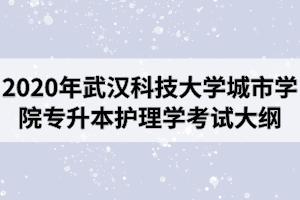 2020年武汉科技大学城市学院专升本《护理学》专业考试大纲