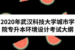 2020年武汉科技大学城市学院普通专升本《环境设计》专业考试大纲