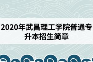 2020年武昌理工学院普通专升本招生简章