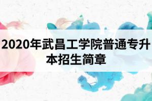 2020年武昌工学院普通专升本招生简章