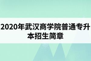2020年武汉工商学院普通专升本招生简章