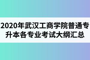2020年武汉工商学院普通专升本各专业考试大纲汇总