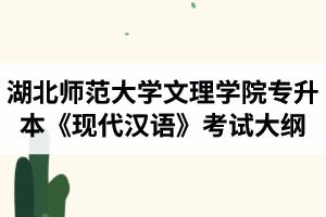 2020年湖北师范大学文理学院专升本《现代汉语》考试大纲