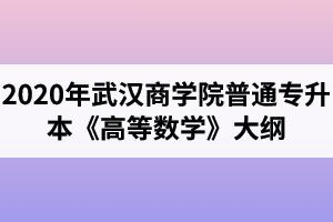 2020年武汉商学院普通专升本《高等数学》考试大纲