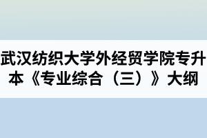 2020年武汉纺织大学外经贸学院普通专升本《专业综合(三)》考试大纲