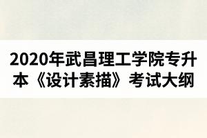 2020年武昌理工学院普通专升本《设计素描》考试大纲