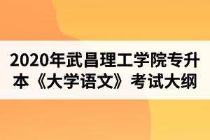 2020年武昌理工学院普通专升本《大学语文》考试大纲