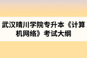 2020年武汉晴川学院普通专升本《计算机网络》考试大纲