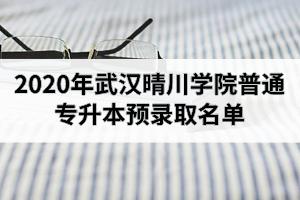 2020年武汉晴川学院普通专升本预录取名单