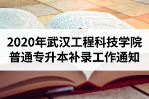 2020年武汉工程科技学院普通专升本补录工作通知