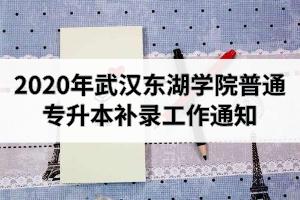 2020年武汉东湖学院普通专升本补录工作通知