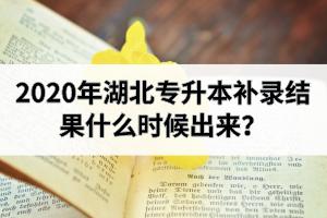 2020年湖北专升本补录结果什么时候出来?补录流程和录取规则是怎样的?