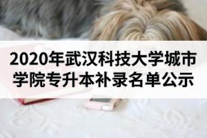 2020年武汉科技大学城市学院专升本补录名单公示
