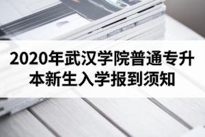 2020年武汉学院普通专升本新生入学报到须知