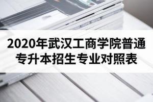 2020年武汉工商学院普通专升本招生专业对照表