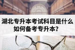 湖北专升本考试科目是什么?如何备考专升本?