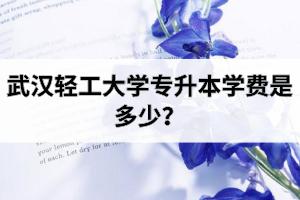武汉轻工大学专升本学费是多少?