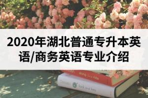 2020年湖北普通专升本英语/商务英语专业招生院校及考试科目介绍