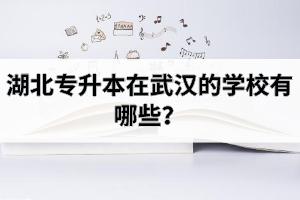 湖北专升本在武汉的学校有哪些?哪些因素会影响大家选择院校?