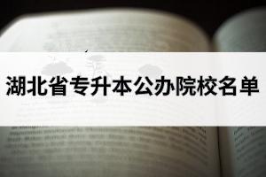 湖北省专升本公办院校有哪些?