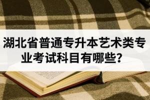 湖北省普通专升本艺术类专业考试科目有哪些?