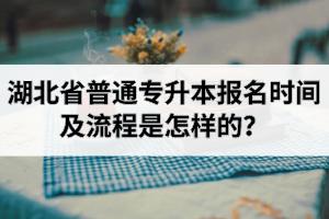 湖北省普通专升本考试报名了就可以考上?