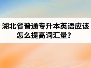 湖北省普通专升本英语应该怎么提高词汇量?