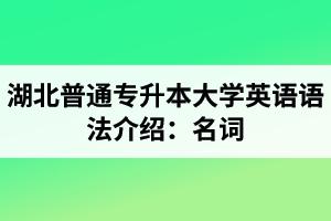 湖北普通专升本大学英语语法介绍:名词