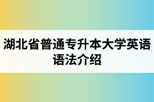 湖北省普通专升本大学英语语法介绍