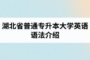 湖北普通专升本大学英语语法介绍:动词