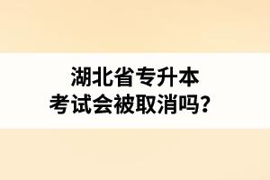 湖北省专升本考试会被取消吗?