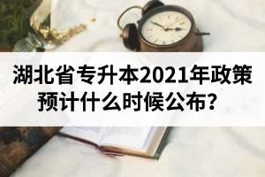 湖北省专升本2021年政策预计什么时候公布?