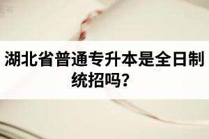 湖北省普通专升本是全日制统招吗?毕业证与普通本科一样吗?