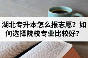 湖北省专升本怎么报志愿?如何选择填报院校专业比较好?