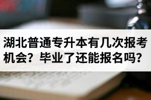 湖北省普通专升本有几次报考机会?毕业了还能报名吗?