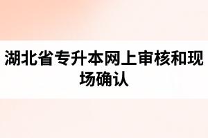 湖北省专升本网上审核和现场确认