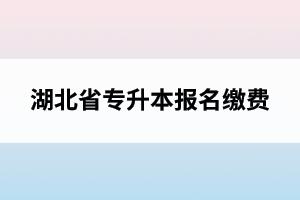 湖北省专升本报名缴费